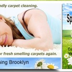 Cleaning Your Carpet the Green Way
